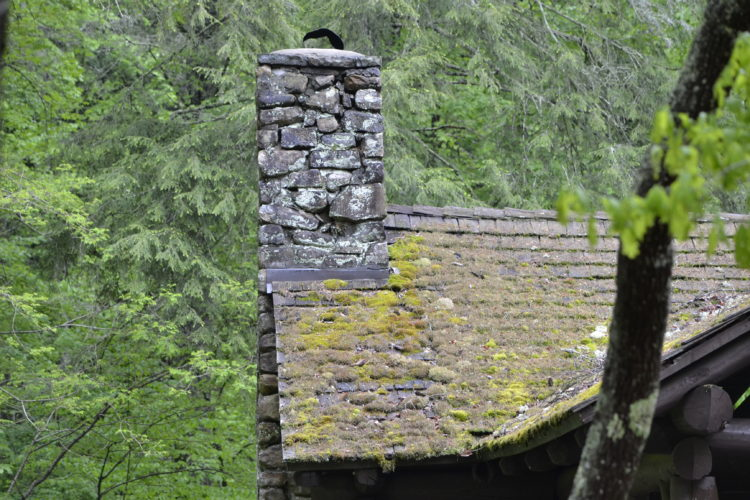 backbone ridge shelter mossy roof stone chimney